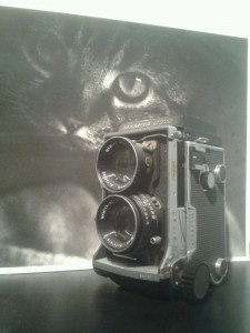 Mamiya Dubbel Oog Camera & Max